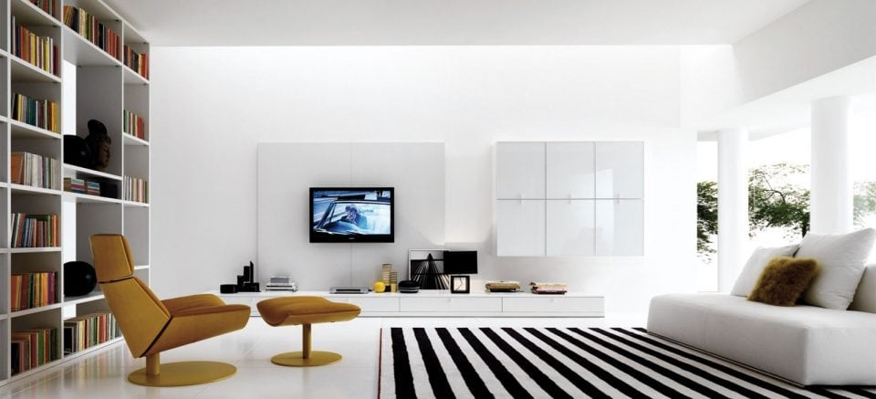 Large living room photo